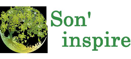 son-inspire.ch